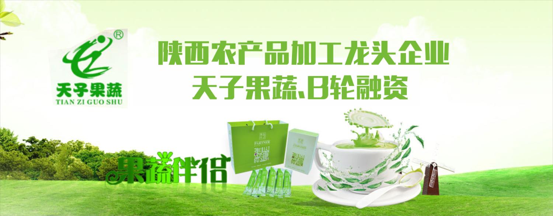 天子果蔬(B轮)融资-大健康食品产业服务商
