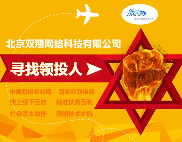 第十九号项目:北京互联网创业领导品牌双翔创客(已盈利)