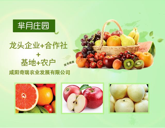 第十七号项目:咸阳奇瑞农业-《芈月庄园》项目(已盈利)